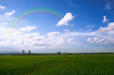 """Fields And Rainbow"" by rakratchada torsap"