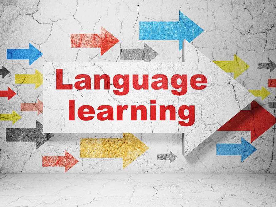 Changing the Way We Learn Languages