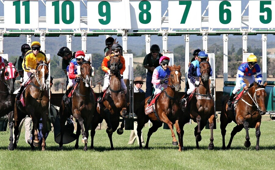 Facts about Melbourne Cup